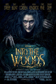 Into the Woods (3 spettacoli)