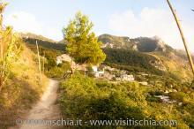 Santa-Maria_Monte-1191