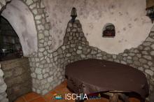 Uva_Rilla-2196