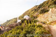 Santa-Maria_Monte-1129