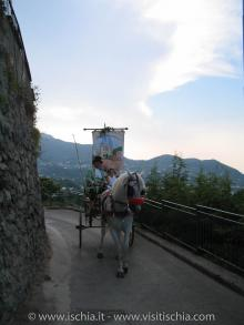Villa Campagnano